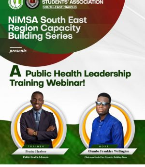NiMSA South Easy Capacity Building Series